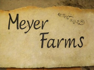 meyer farms rock