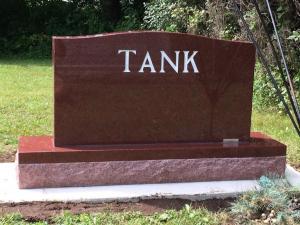 Tank Back Final