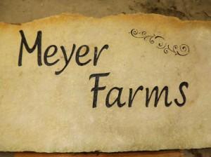meyer farms rock